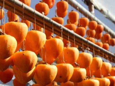 柿は、食物繊維、ビタミンCがたくさん。美容・健康にとってもいい。