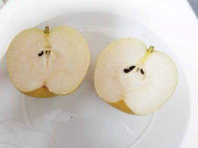 デザートの梨で分数の計算、生活の中から算数を学ぼう