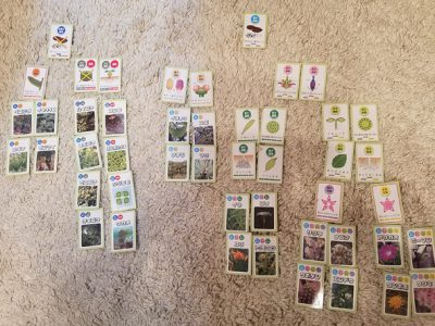 植物のなかまカードゲームで植物の分類を学んじゃおう!合弁花類、藻類など