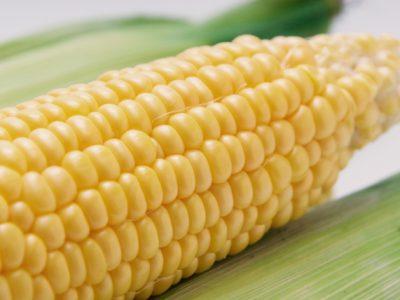 とうもろこし、なたね、隠れた遺伝子組み換え食品に気を付けよう