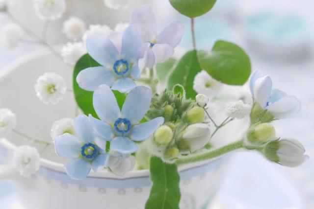 bluehana