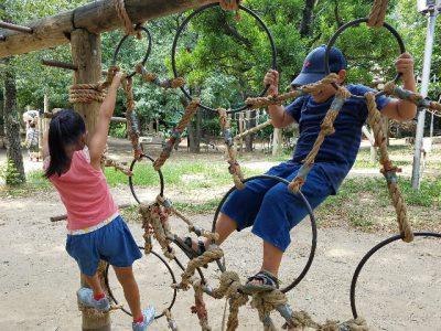 平和の森公園フィールドアスレチックで、子供は元気いっぱい!回り方のコツ、感想、大人の楽しみ方など。