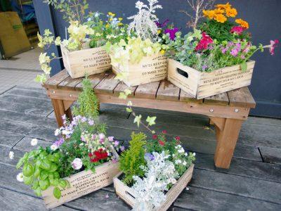 広い場所がなくても、土がなくても、センスのある庭が作れます。
